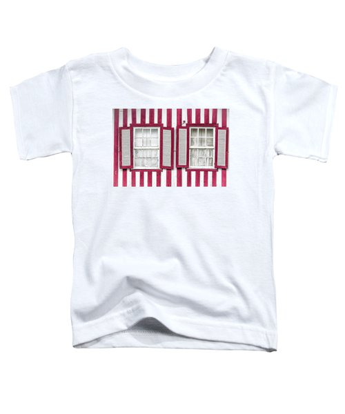 Two Old Windows Toddler T-Shirt