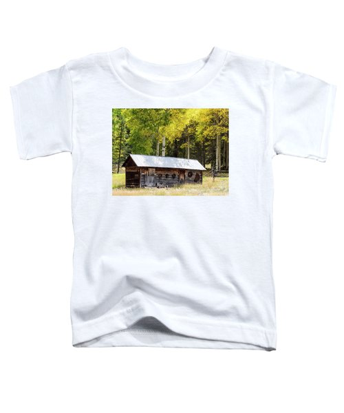 Uptop A Colorado Ghost Town Toddler T-Shirt