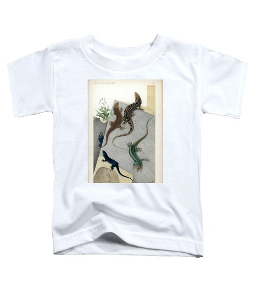 Varieties Of Wall Lizard Toddler T-Shirt