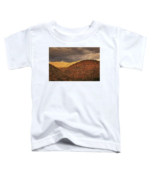 View From A Train Txt Toddler T-Shirt