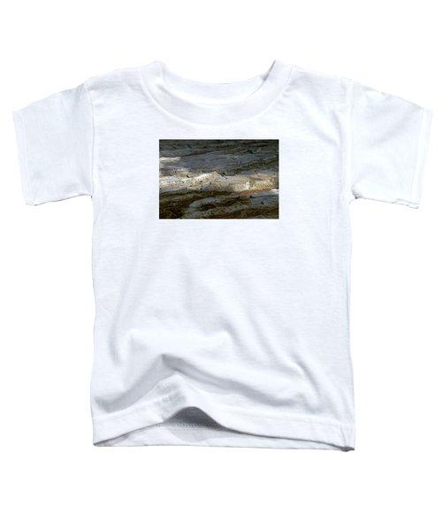 View From Masada Toddler T-Shirt by Dubi Roman