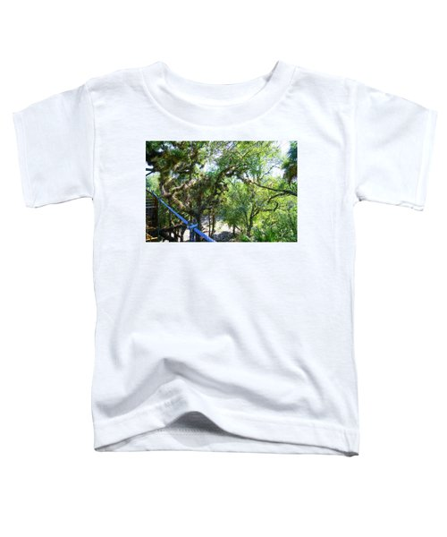 View Is Incredible Toddler T-Shirt