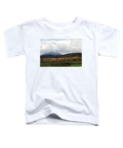View Of Sharp Top In Blue Ridge Mountains Toddler T-Shirt