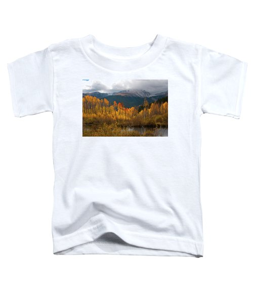 Vivid Autumn Aspen And Mountain Landscape Toddler T-Shirt