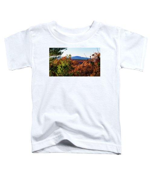 Wachusett In Fall Toddler T-Shirt