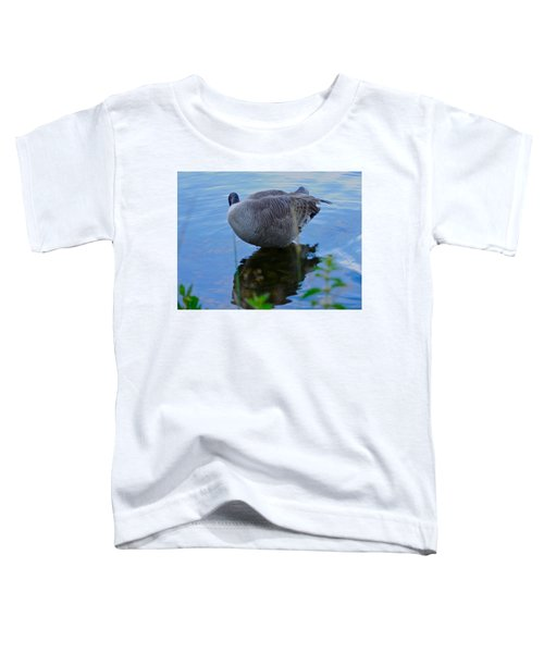 Where Are You Shadow Toddler T-Shirt