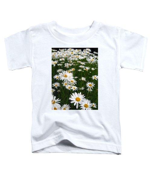 Wild Daisies Toddler T-Shirt