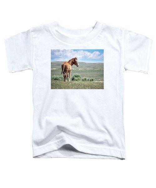 Wild Mustang Colt Of Sand Wash Basin Toddler T-Shirt