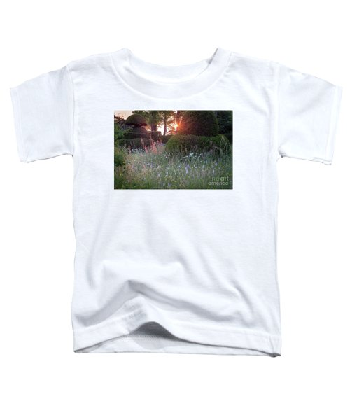 Wildflower Meadow At Sunset, Great Dixter Toddler T-Shirt