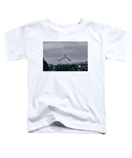 Winter Morning Fog Envelops Chimney Rock Toddler T-Shirt