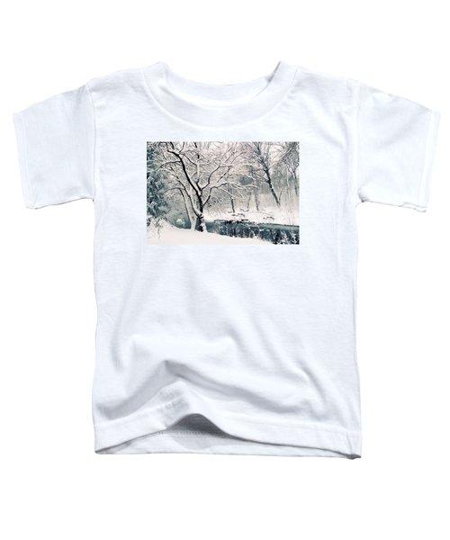 Winter's Charm Toddler T-Shirt