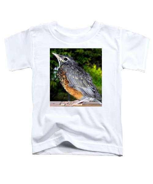 Young American Robin Toddler T-Shirt