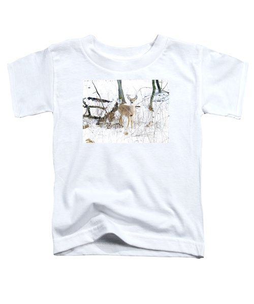 Young Doe And Spring Snow Toddler T-Shirt
