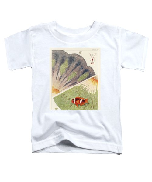 Barrier Reef Anemones From The Great Barrier Reef Of Australia  1893 By William Saville Kent  1845- Toddler T-Shirt