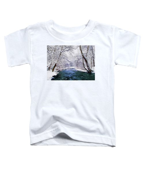 Winter White Toddler T-Shirt