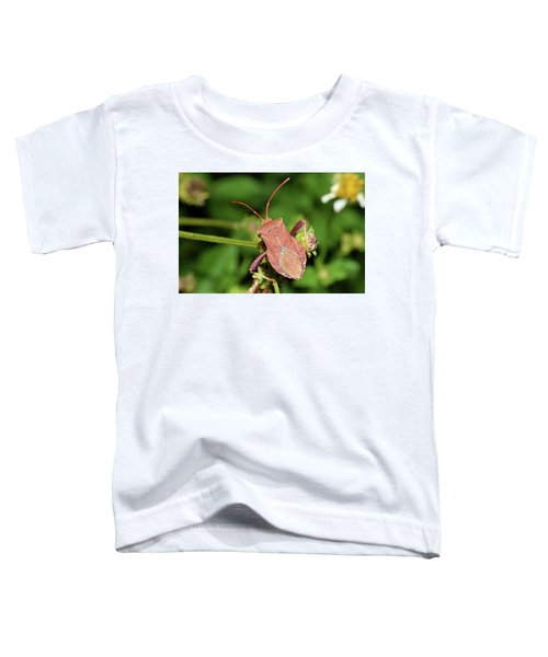 Leaf Footed Bug Toddler T-Shirt