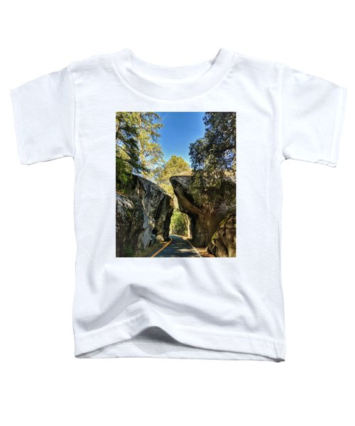Arch Rock Entrance Toddler T-Shirt
