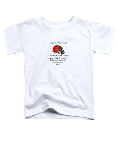 Asian Harlequin Ladybug Toddler T-Shirt