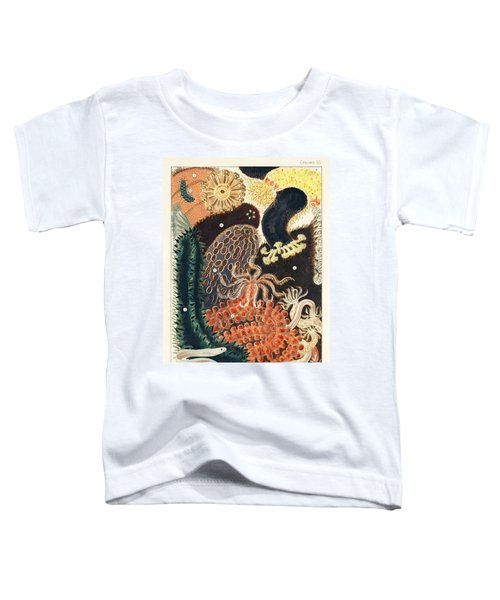 Barrier Reef Trepang Or Beche De Mer From The Great Barrier Reef Of Australia  1893  By William Savi Toddler T-Shirt