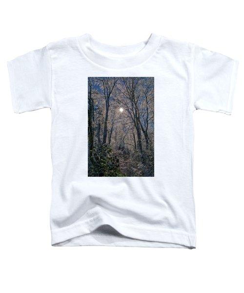 Bass Lake Frosty Toddler T-Shirt