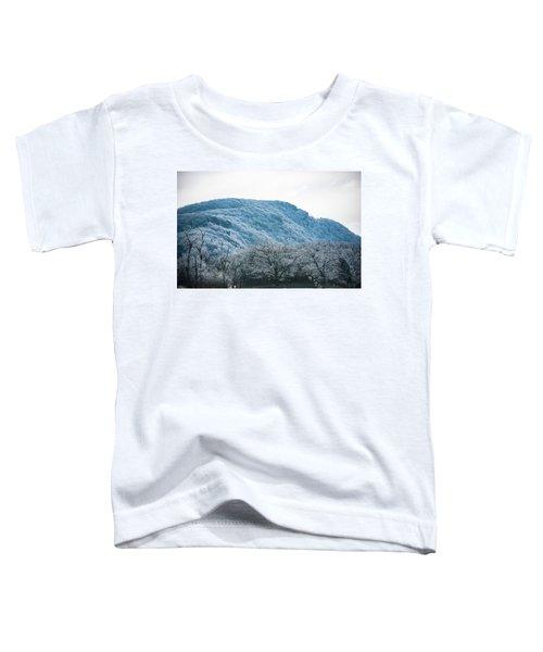 Blue Ridge Mountain Top Toddler T-Shirt