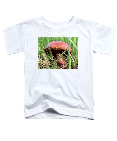Bug On Boletus Edulis Toddler T-Shirt