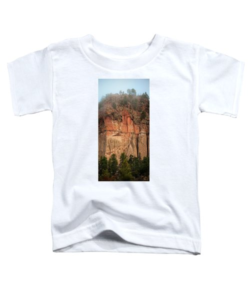Cliff Face Toddler T-Shirt