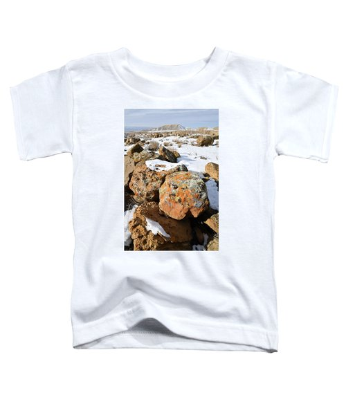 Colorful Lichen Covered Boulders In Book Cliffs Toddler T-Shirt
