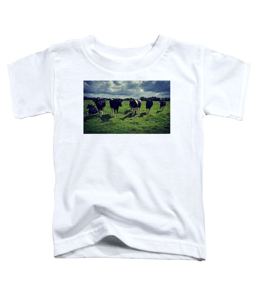 Dairy Heifers Toddler T-Shirt
