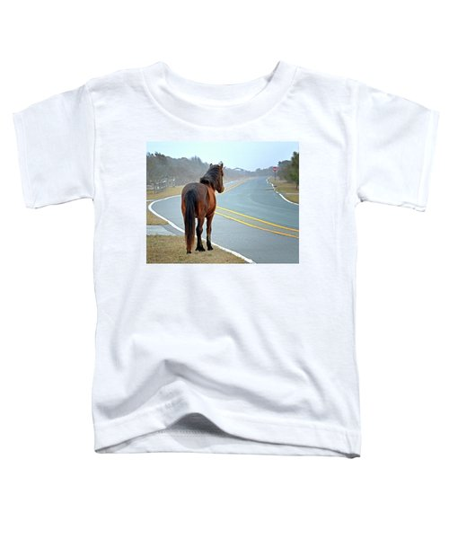 Delegats's Pride Looking For Visitors To Assateague Island Toddler T-Shirt