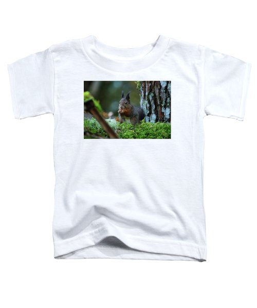 Eating Squirrel Toddler T-Shirt