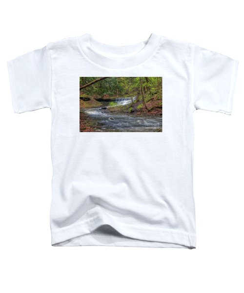 Emery Park Toddler T-Shirt