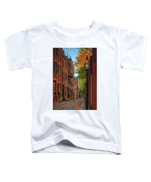 Fall In Beacon Hill Toddler T-Shirt