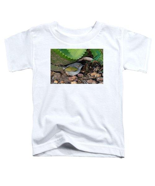 Gray-backed Camaroptera Toddler T-Shirt
