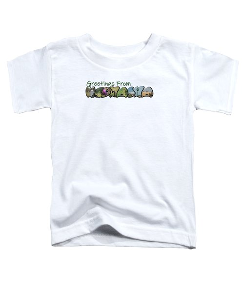 Greetings From Nebraska Big Letter Toddler T-Shirt