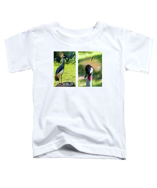 Grey Crowned Crane Gulf Shores Al Collage 8 Diptych Toddler T-Shirt
