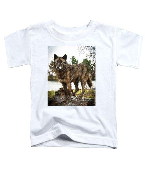 Handsome Niko Toddler T-Shirt