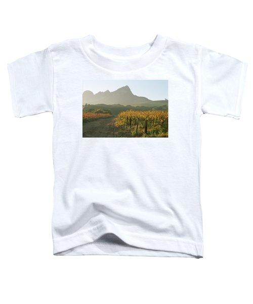 Helderburg Vineyard Toddler T-Shirt
