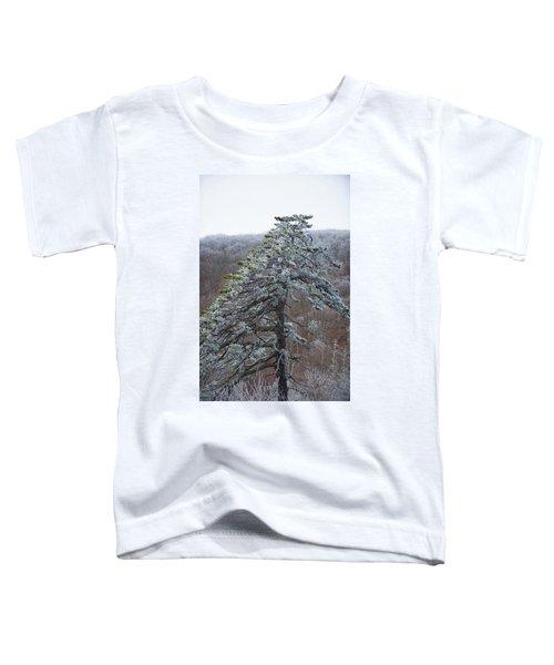 Hoarfrost Gathers Toddler T-Shirt