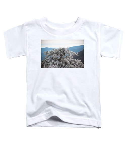Hoarfrost In The Blue Ridge Mountains Toddler T-Shirt