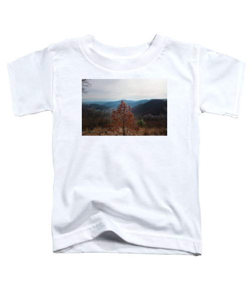 Hoarfrost On Fall Leaves Toddler T-Shirt