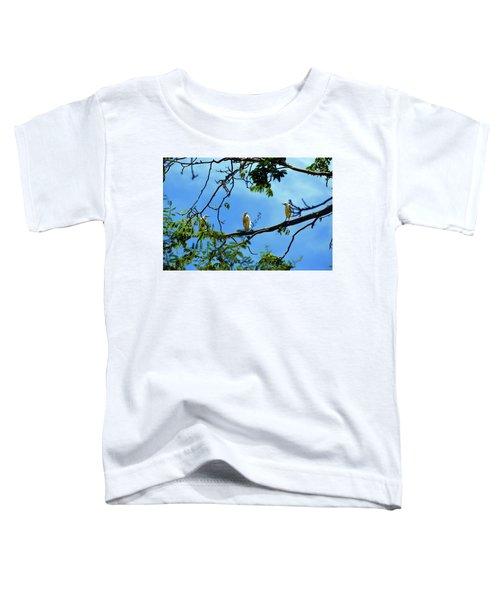 Ibis Perch Toddler T-Shirt
