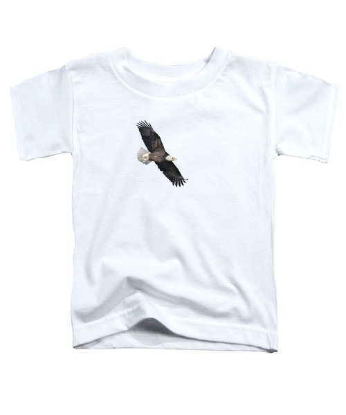 Isolated Bald Eagle 2018-2 Toddler T-Shirt