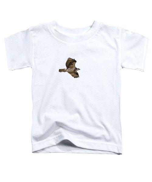Isolated Osprey 2019-1 Toddler T-Shirt