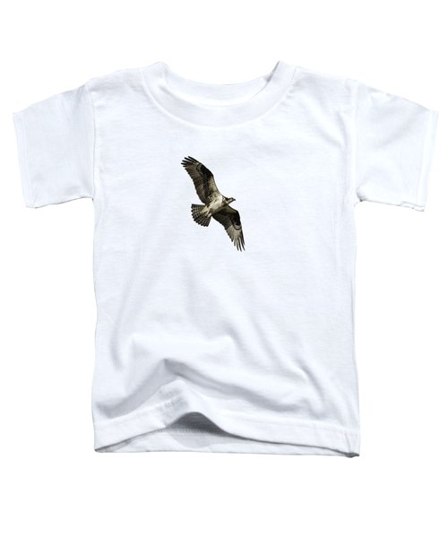Isolated Osprey 2019-2 Toddler T-Shirt