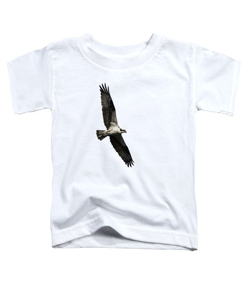 Isolated Osprey 2019-3 Toddler T-Shirt