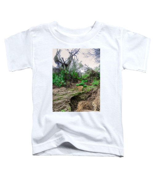 January Day  In The Vekol Wash Toddler T-Shirt