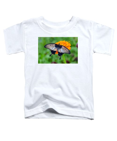 Kite Swallowtail  Toddler T-Shirt