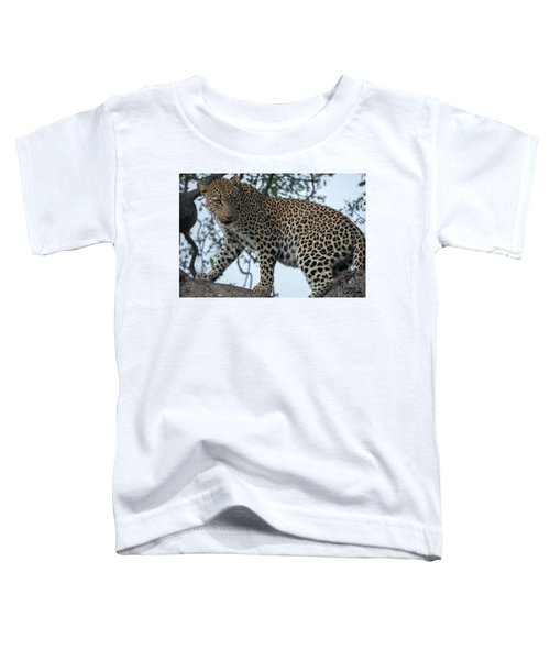 Leopard Anticipation Toddler T-Shirt