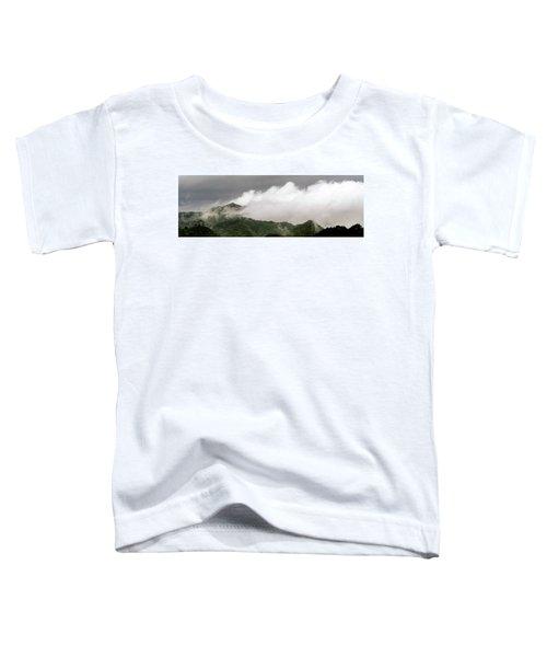 Misty Mountains II 3x1 Toddler T-Shirt